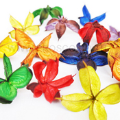Mixed Color Cotton Pod for potpourri ingredients